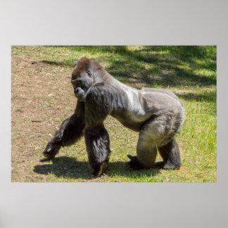 Impresión del gorila del Silverback