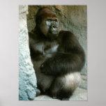 Impresión del gorila del Silverback Impresiones