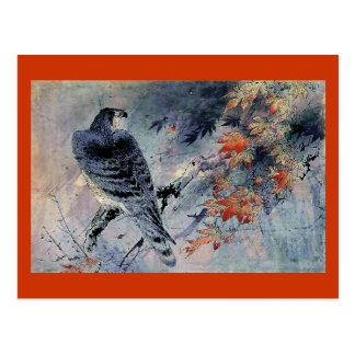 Impresión del japonés del pájaro del halcón postales