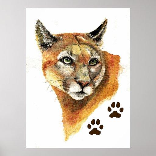 Impresión del león de montaña del puma póster