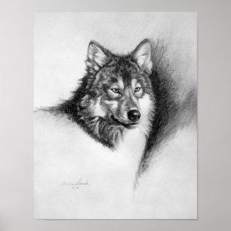 impresión del lobo póster