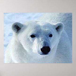 Impresión del oso polar poster