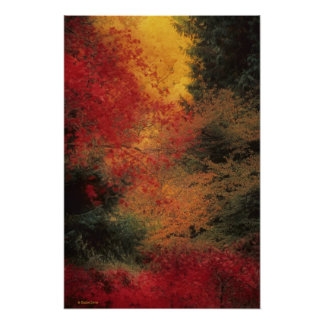 Impresión del otoño poster