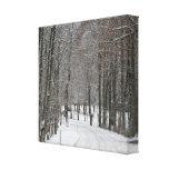 Impresión del país de las maravillas del invierno  lona estirada galerías