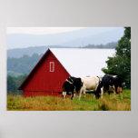Impresión del paisaje de la granja de la vaca impresiones