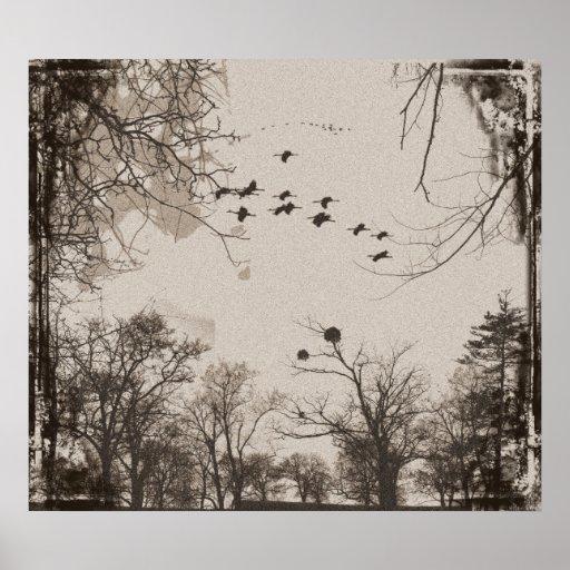 Impresión del paisaje de los pájaros del vintage poster