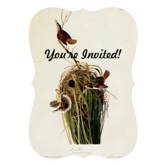 Impresión del pájaro del vintage del wren de invitaciones personales