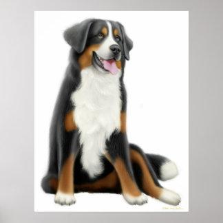 Impresión del perro de montaña de Bernese Póster