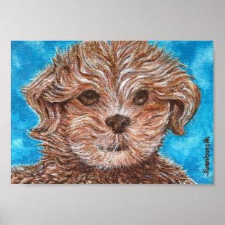 Impresión del perro de perrito de Shih Tzu Impresiones