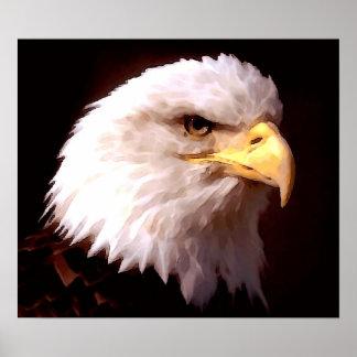 Impresión del poster de American Eagle Eagle calvo