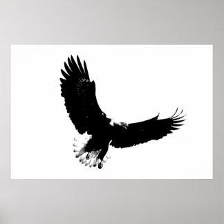 Impresión del poster de Eagle calvo - posters de E