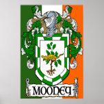 Impresión del poster de la bandera del escudo de a