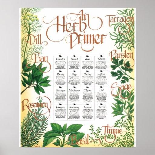 Impresión del poster de la cartilla de la hierba