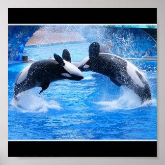 Impresión del poster de la foto de la ballena