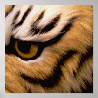 Impresión del poster de la foto del tigre