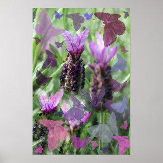 Impresión del poster de la lavanda de la mariposa