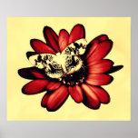 Impresión del poster de la máscara de la mariposa