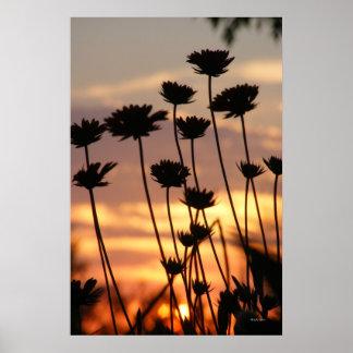 Impresión del poster de la puesta del sol de los W