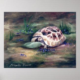 Impresión del poster de la tortuga del ángel