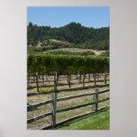 Impresión del poster de los campos de la uva del v