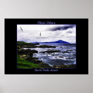 Impresión del poster de los pájaros de la isla de