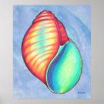 Impresión del poster de Shell del arco iris