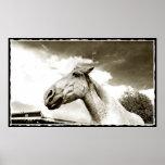 Impresión del poster del arte del caballo del ranc