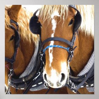 Impresión del poster del caballo de proyecto de Cl