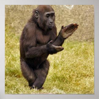 Impresión del poster del chimpancé