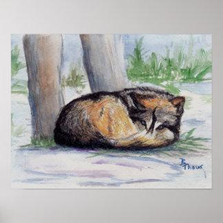 Impresión del poster del lobo en descanso