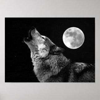 Impresión del poster del lobo gris y de la luna póster