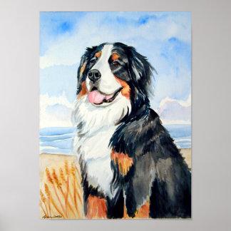 Impresión del poster del perro de montaña de Berne