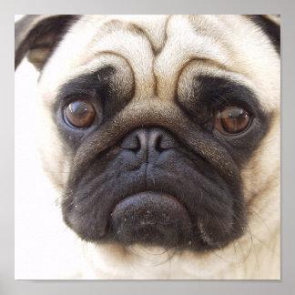 Impresión del poster del perro del barro amasado