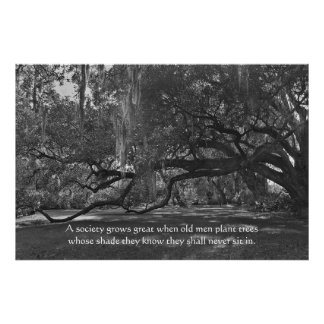 Impresión del poster del proverbio de los árboles