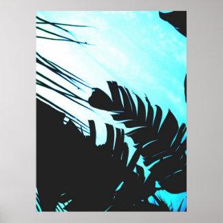 Impresión del poster (del Refection tropical)