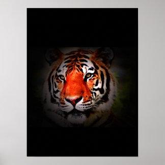 Impresión del poster del tigre - posters de los ti