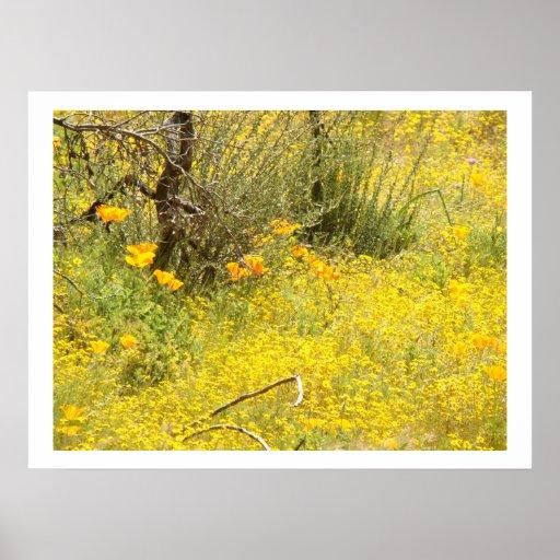 Impresión del prado del Wildflower Posters