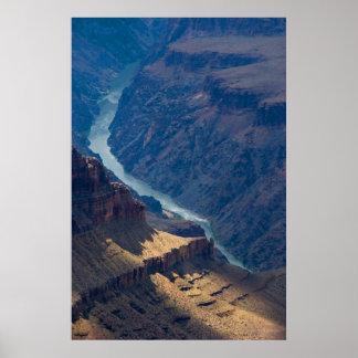 Impresión del río Colorado 4727 del Gran Cañón Posters