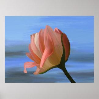 Impresión del rosa del melocotón póster