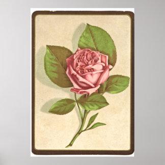 Impresión del rosa del vintage póster
