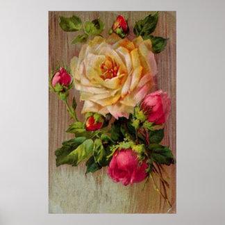 Impresión del rosa del vintage posters