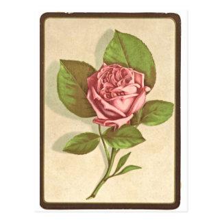 Impresión del rosa del vintage tarjetas postales