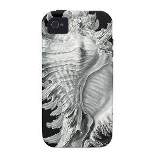 Impresión del Seashell del vintage Case-Mate iPhone 4 Carcasas