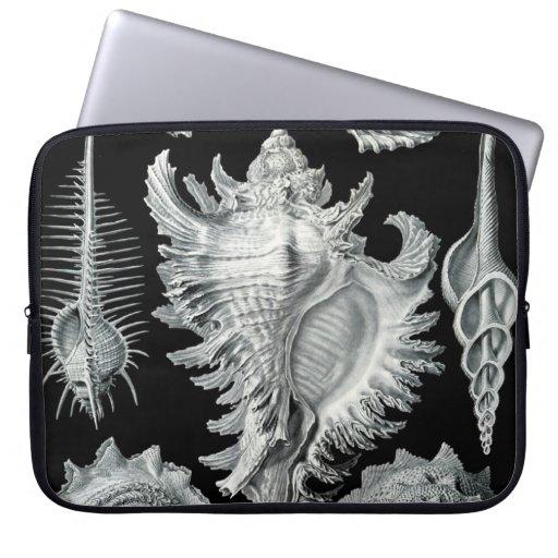 Impresión del Seashell del vintage Fundas Computadoras