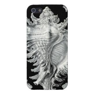 Impresión del Seashell del vintage iPhone 5 Protector