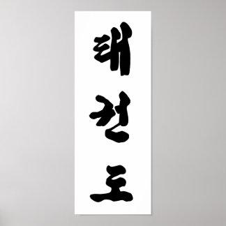 Impresión del Taekwondo Póster