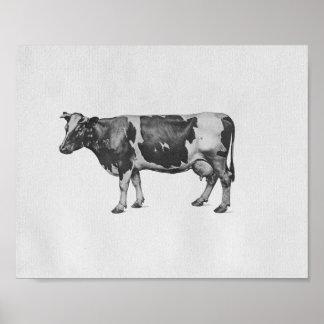 Impresión del vintage de la anatomía de la vaca impresiones