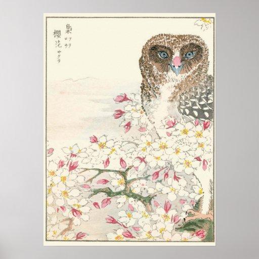 Impresión del vintage del búho de Japón Impresiones