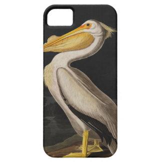 Impresión del vintage del pájaro del pelícano iPhone 5 funda