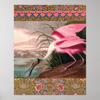 Impresión del vintage del pájaro del Spoonbill Posters